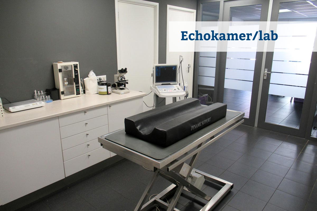Echokamer-laboratorium